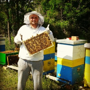Pčelarstvo Miladinović sa Homolja 065/8945789 milan@homoljskimed.rs